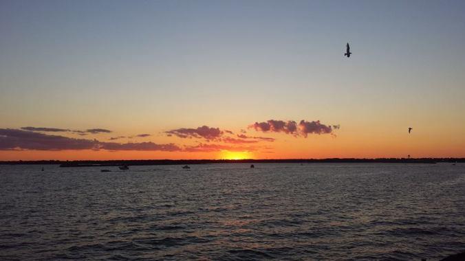 Buffalo marina at sunset. [Photo credit: Daniel J. Ryan]