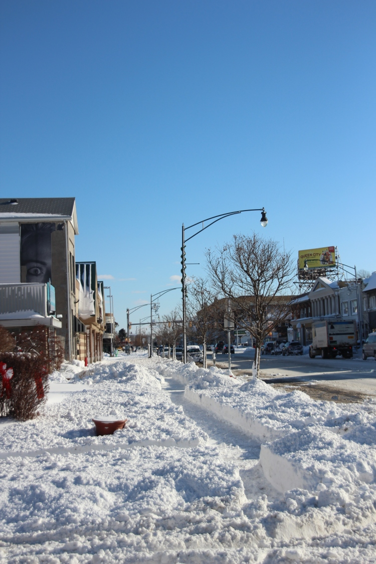 Hertel Avenue in North Buffalo, after a white-out blizzard that started late on Thursday the 8th and lasted into the early morning of the 9th.